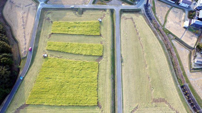 空撮から物流まで、農業用ドローンの成長