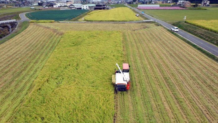 ドローンの活躍で今後農業がどう変わるか