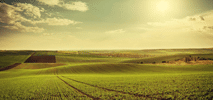 精密農業(リモートセンシング)
