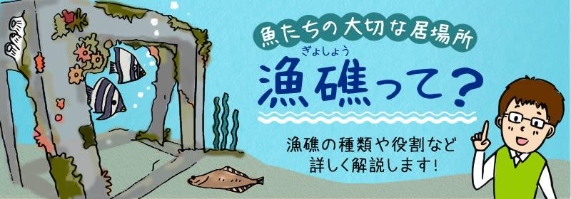 魚が集まる「魚礁」を徹底解説!種類、機能、設置方法など