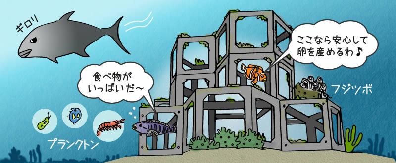 魚礁に魚が集まる理由