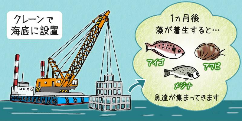 人工魚礁設置後の変化