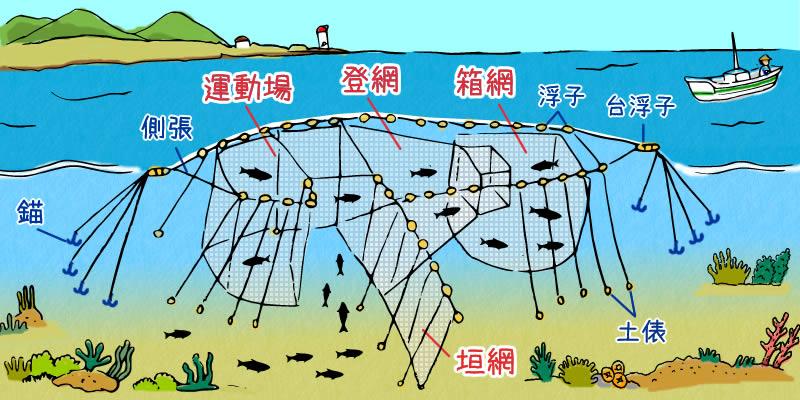 定置網で魚を獲る仕組み